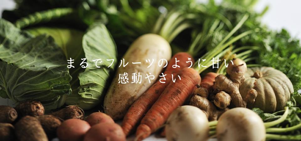 三竹さんのあまっ娘野菜